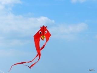 F-Tail Duck 3CV.fr